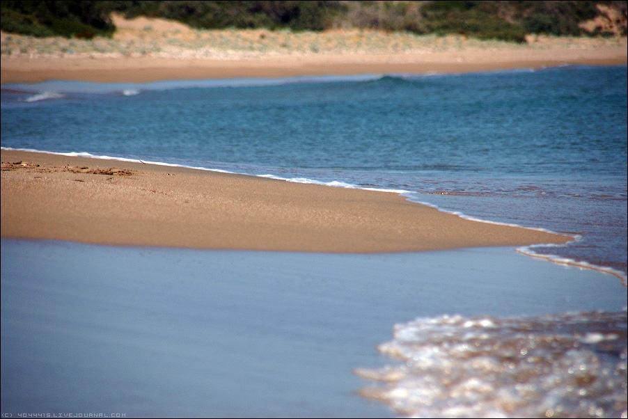 Дикие песчаные пляжи Черного моря