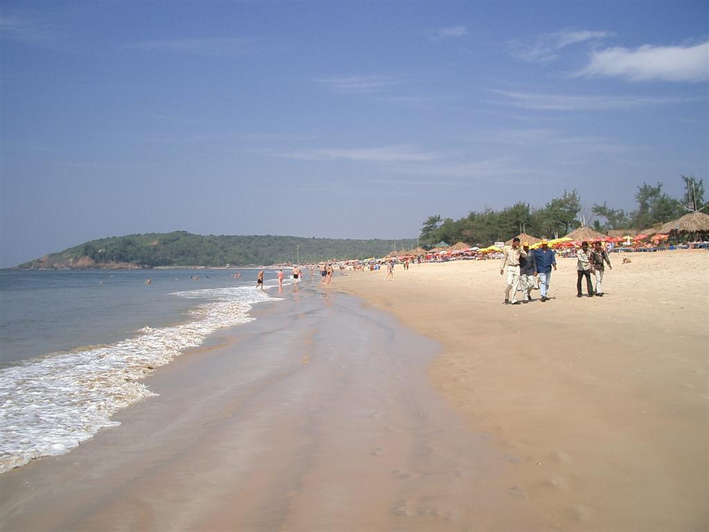 Фото пляжа бага в гоа
