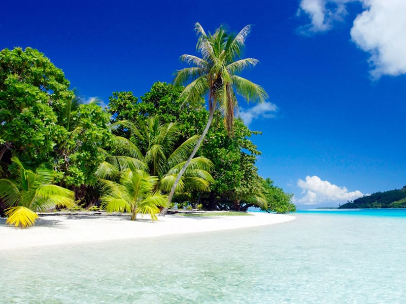 Пляж Парадайз -Гоа