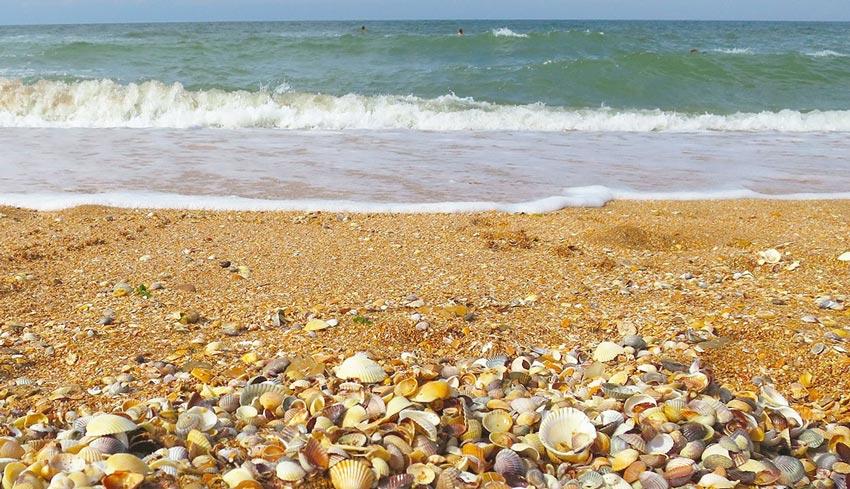 Пляж поселка Курортное