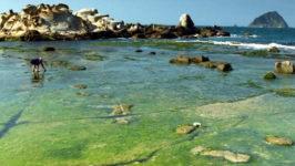 Пляжи Тайвань