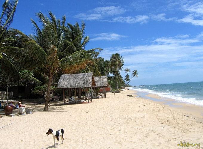 Прекрасные пляжи Вьетнама
