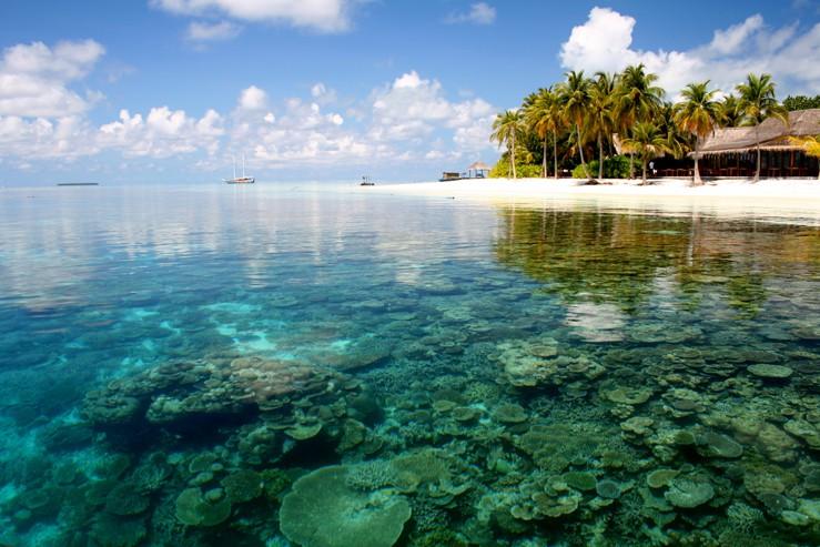 Красивый пляж Бали