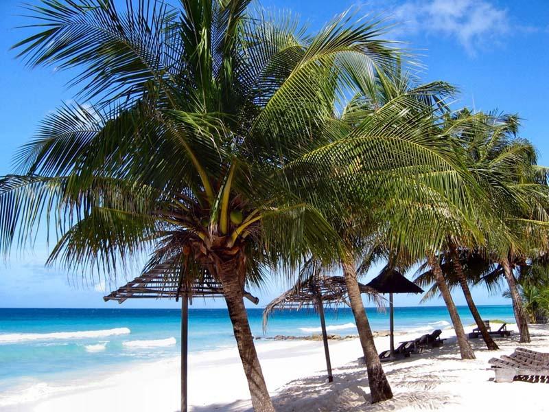 Барбадос -пляжный отдых