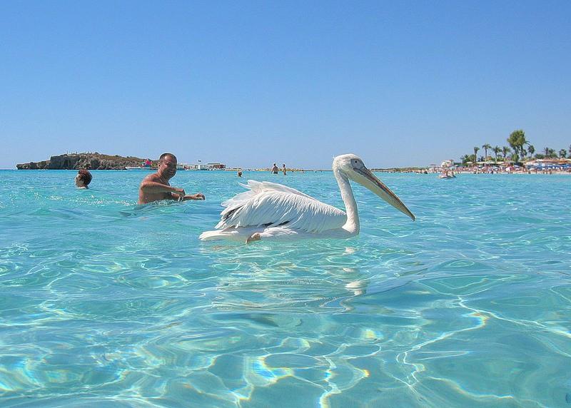 Пляжи южного Кипра