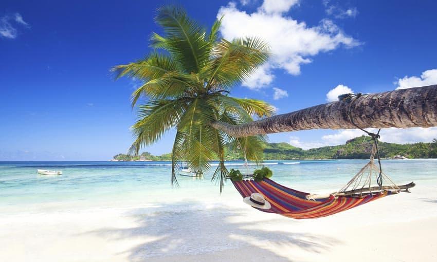 гамак на берегу пляжа Сейшелы