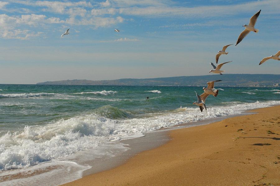 Нудистские пляжи Азова