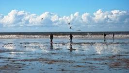 Прогулки по Северному морю