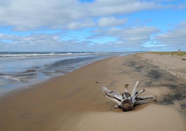 Белое море -пляжный отдых