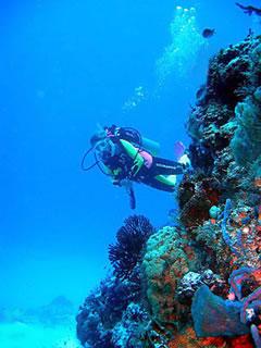 Как разнообразить свой отдых на море?