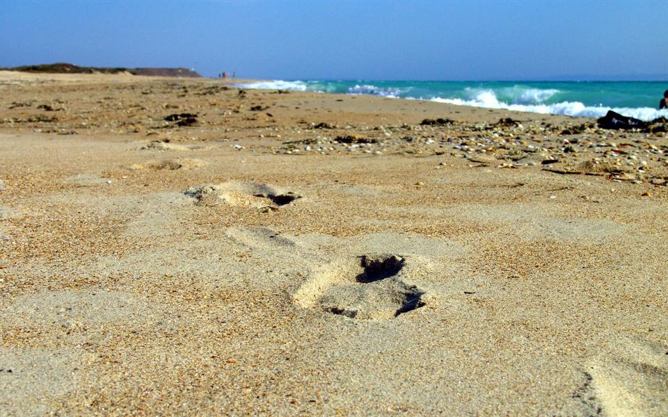 Фото пляжей Краснодарского края