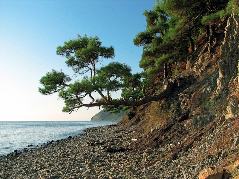 Дикие пляжи Дивноморска