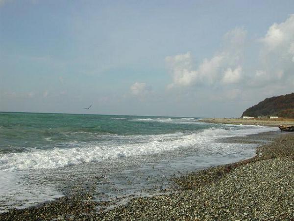 Отзывы о пляжах Дивноморска