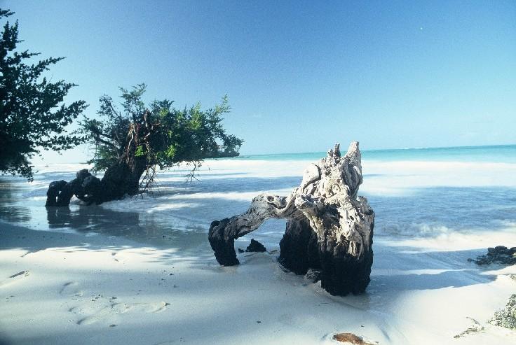 Остров Занзибар