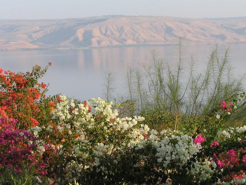 Израильское Средиземноморье