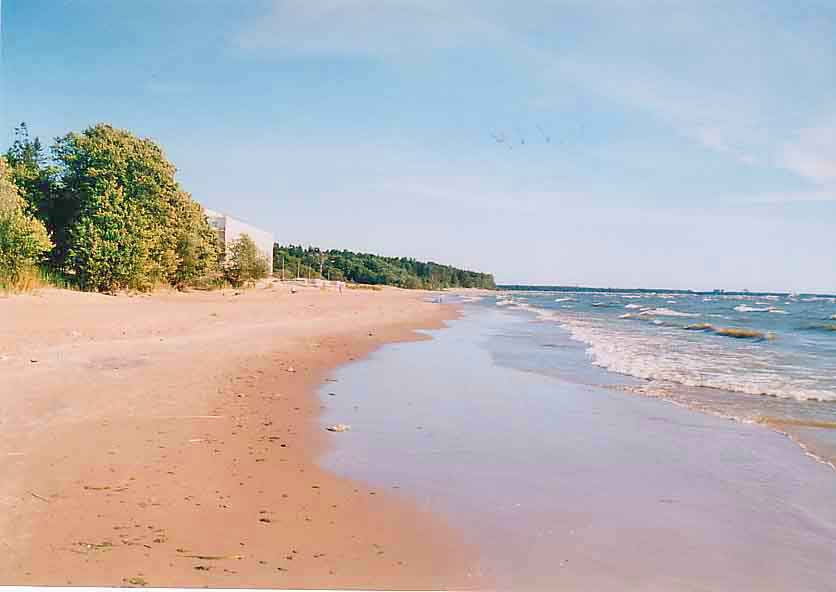Пляж санатория «Репино»