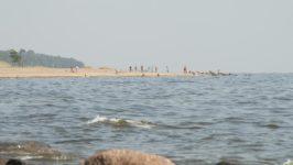 Пляж на берегу Финского залива