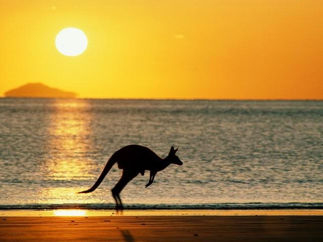 Лучшие пляжи Австралии