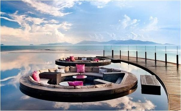 Райский угалок Тайланда