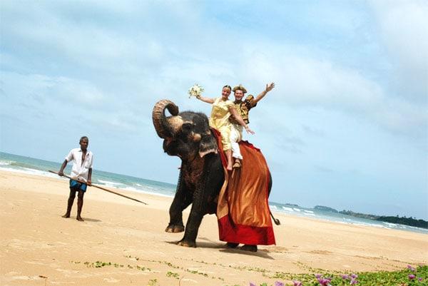 Шри-Ланка и свадьба
