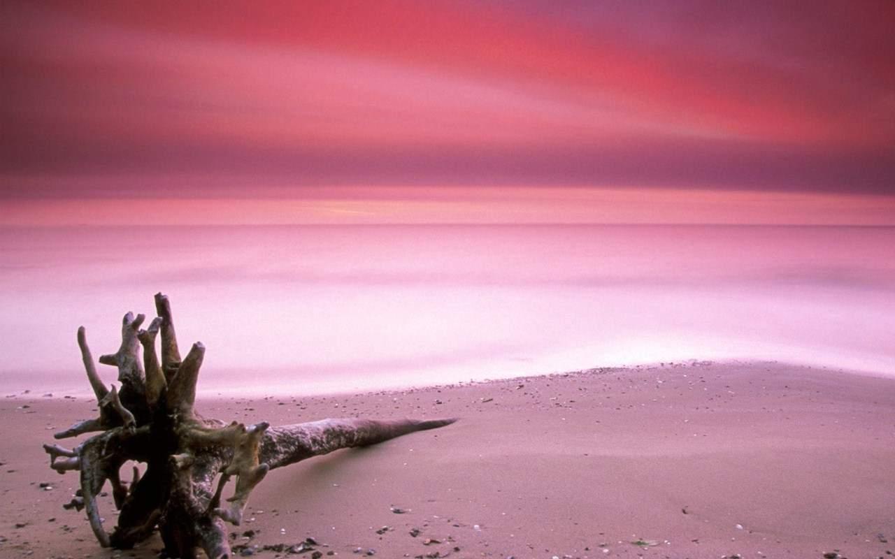 Почему пляж острова розовый