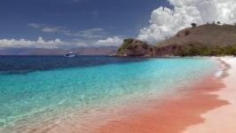 Розовый пляж на острове Харбор