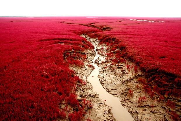 Где Красный пляж в Китае