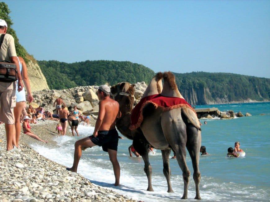 Агойские морские пляжи