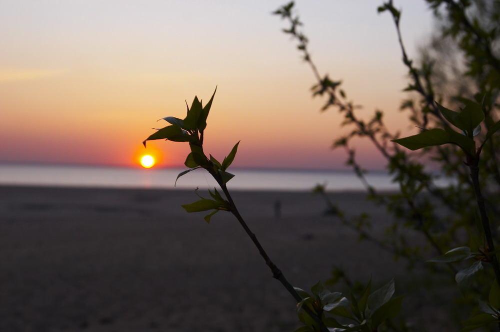 На пляжах Бердска