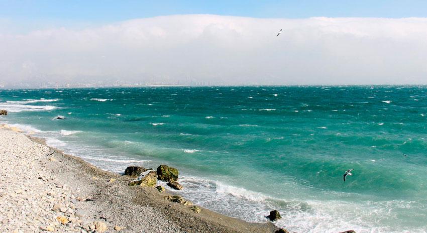 Новороссийск пляж Нептун