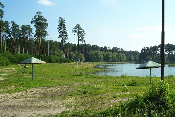 Пляж на озере Лебяжьем