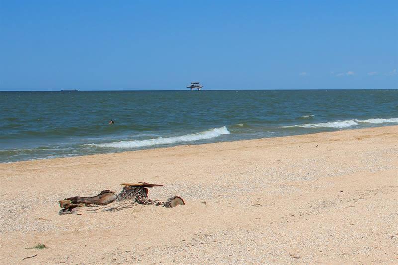 Дикий пляж станицы Голубицкой