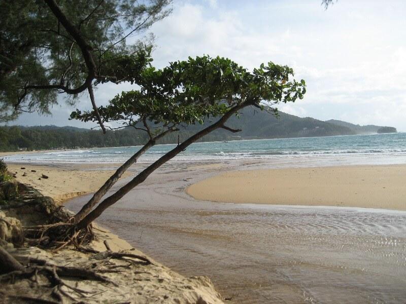 Фото пляжа Най-Янг