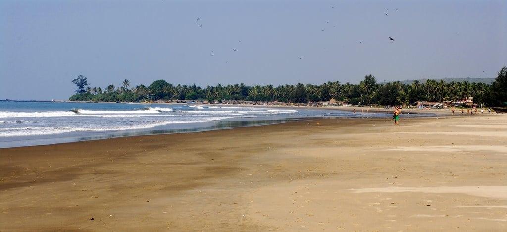 Морджим пляж Гоа отзывы и фото туристов