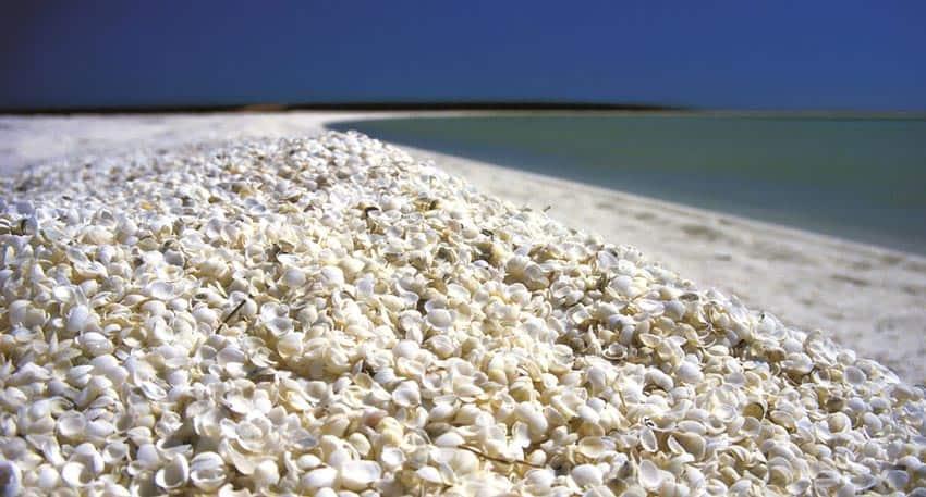 пляжи Сумгаити Азербайджан