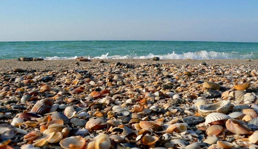 пляж побережья Бакальской косы
