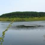 Лыткинский пруд пляжный отдых
