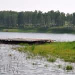отдых на Лыткинском пруду