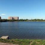 Озеро Борисовский парк