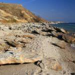 Пляж в Саркеле Цимлянское водохранилище
