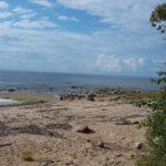 Рыбинское водохранилище Волково