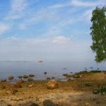 Рыбинское водохранилище Долгий Мох