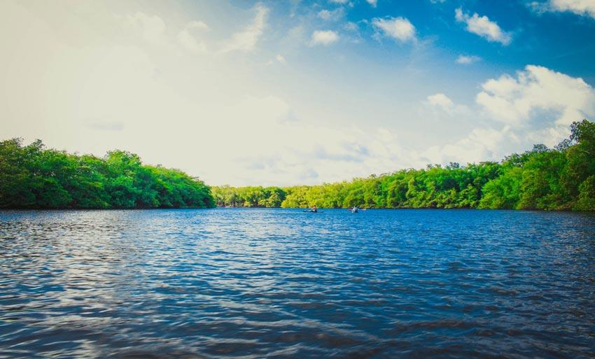 «Дубрава» на Пироговском водохранилище