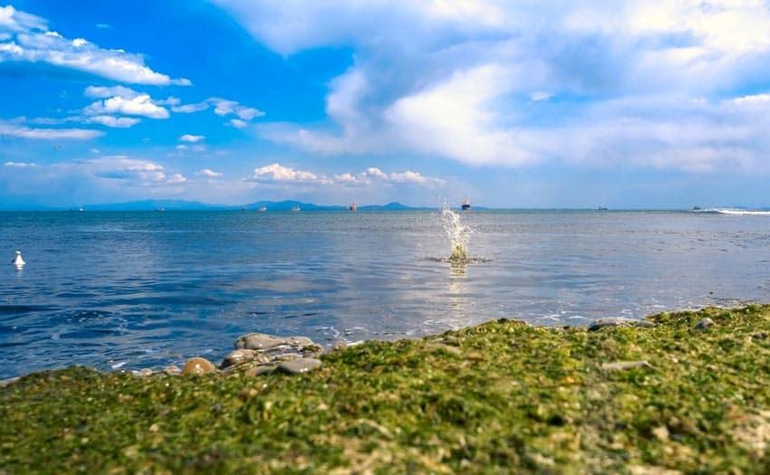 Пляж Патрокл Владивосток