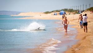 Бугазская коса пляжный отдых
